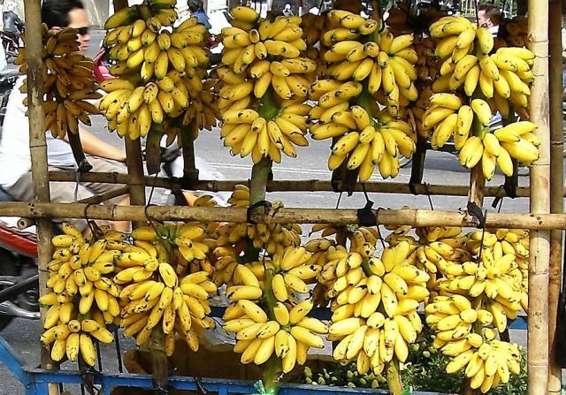 Бананы желтые, фото