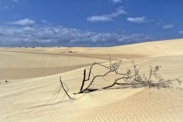 Кусочек пустыни на серфовом курорте: белые и красные дюны в Муйне
