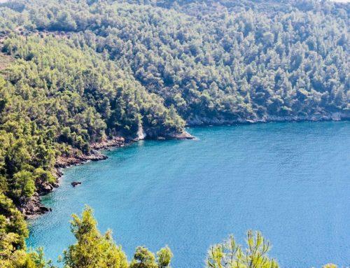 Мугла в Турции — тихий отдых на средиземноморском курорте