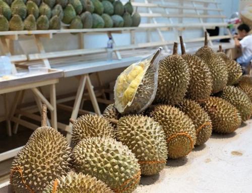 Запрещенный прием — какие фрукты нельзя вывозить из Таиланда?