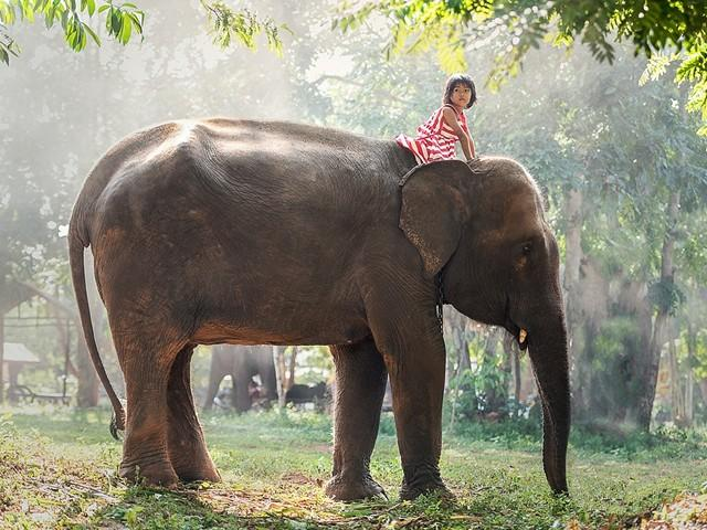 Семейная поездка в Таиланд – отдых с детьми в 2019 году