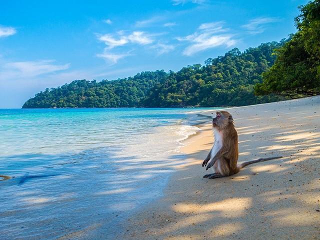 Самые лучшие острова Тайланда для отдыха