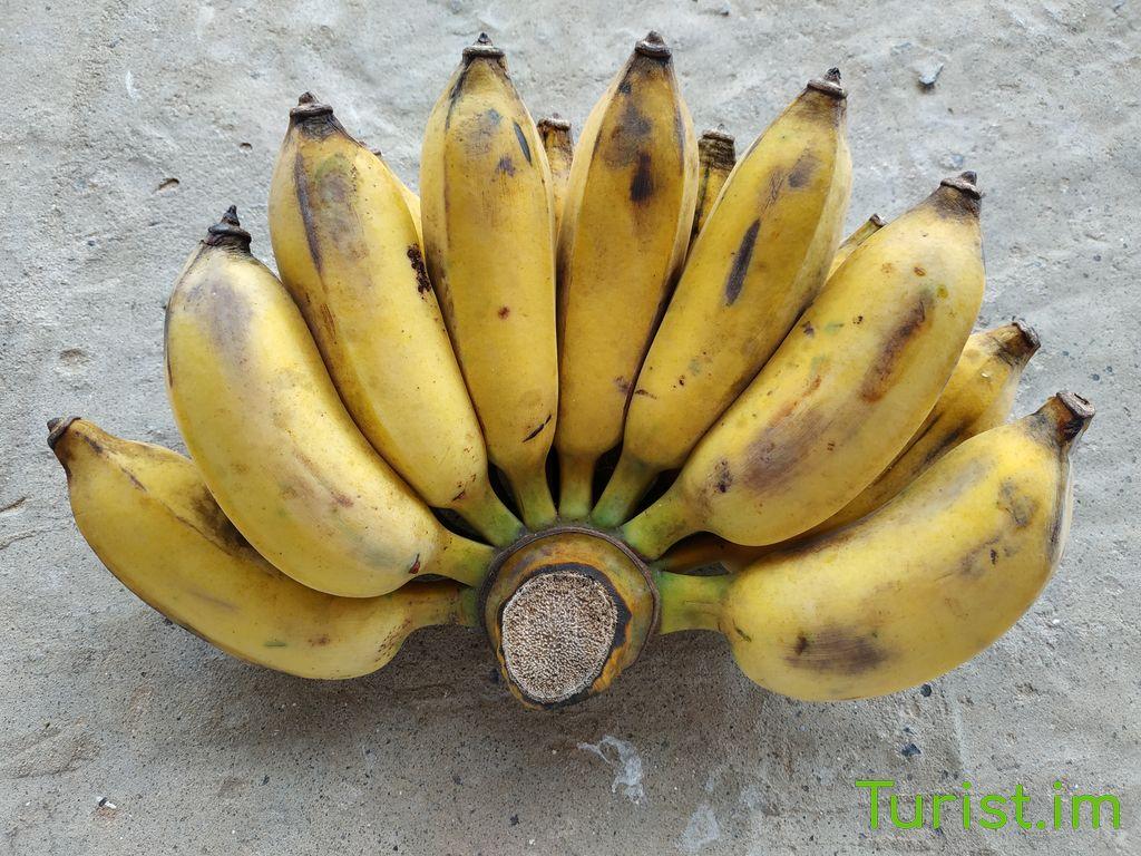 Сезон фруктов в Таиланде 🥭 насыщаемся витаминами на отдыхе