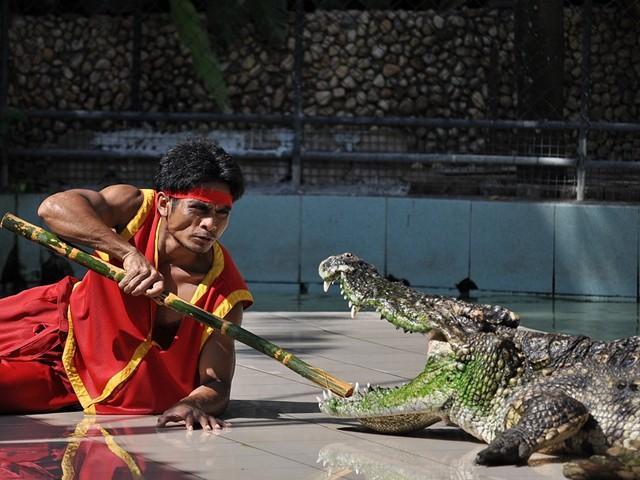 Зоопарк на Пхукете график работы цены фото видео