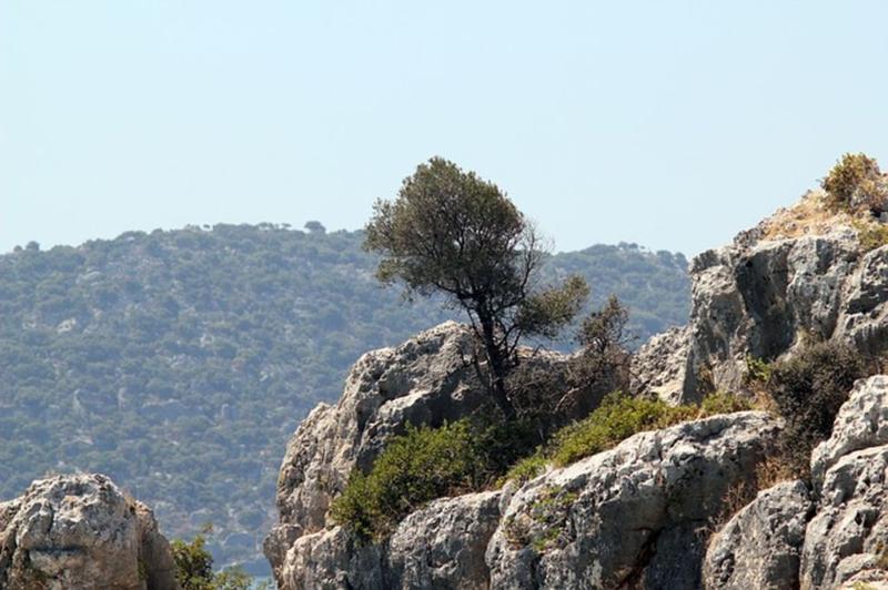 Древняя обитель Богов - гора Тахталы в Турции