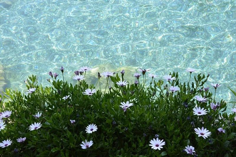 Омолаживающие ванны в Памуккале - бассейн Клеопатры