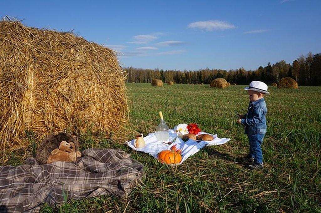 Отдых с детьми в Зеленоградске - вместе придумываем чем заняться на курорте