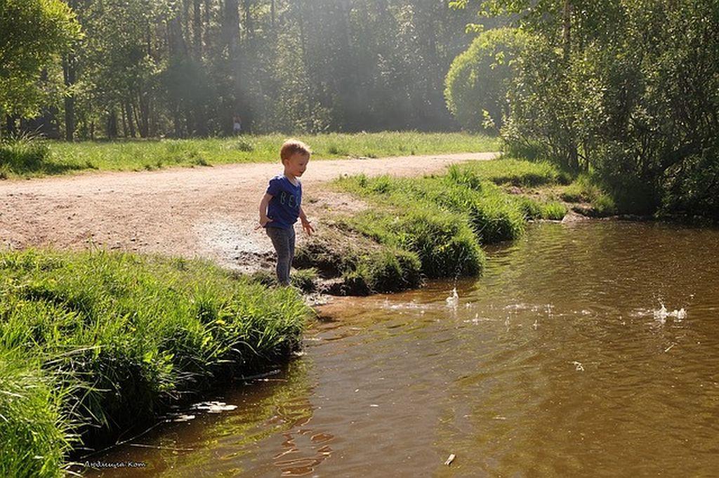 Полезные советы по отдыху с детьми в Феодосии