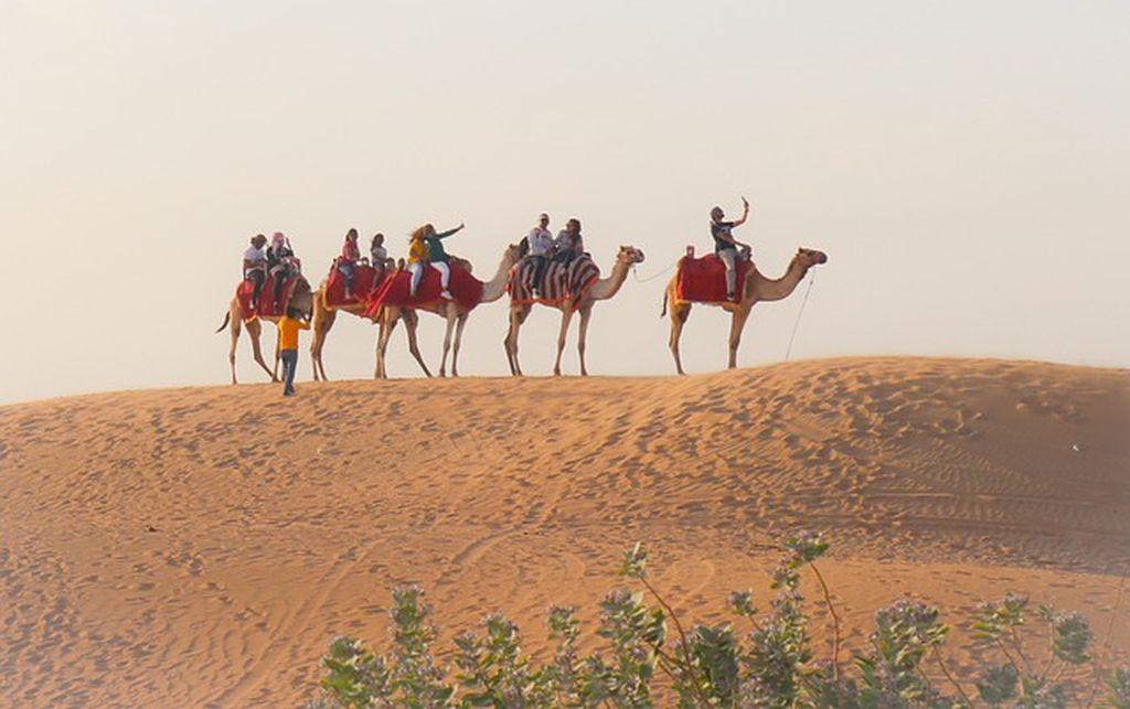 Сафари по пустыне в Дубае, фото