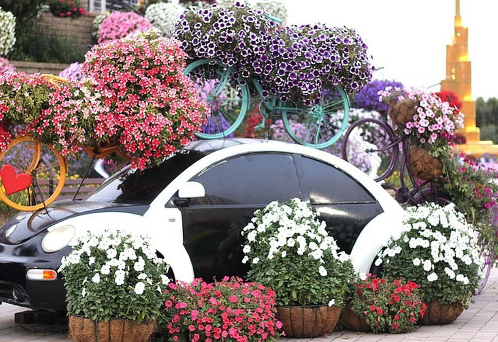 Сад цветов в Дубае, фото