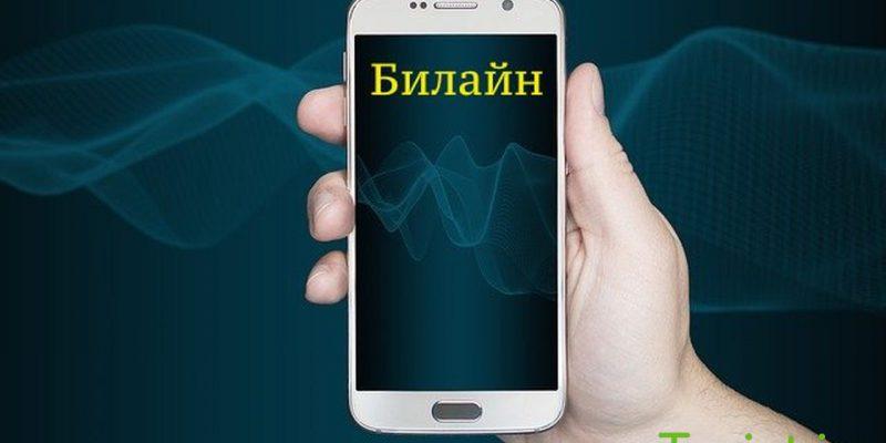 Билайн в Крыму, фото